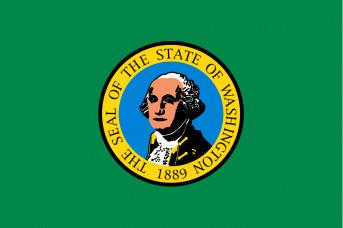 Washington State Flag